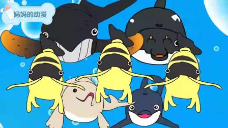 鲨鱼鲸鱼海豚听音乐吃糖果 海洋动漫