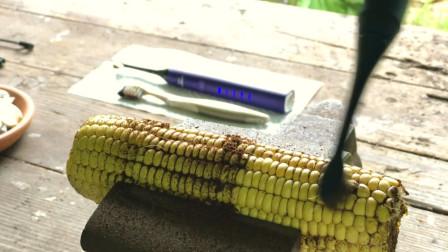 老外拿电动牙刷刷玉米,结果还没普通牙刷刷的干净,场面非常尴尬