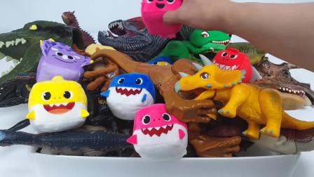 一起来认识各种恐龙玩具