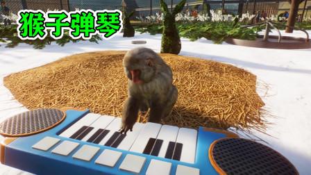 动物园建设15:猕猴在我的动物园里弹电子琴!
