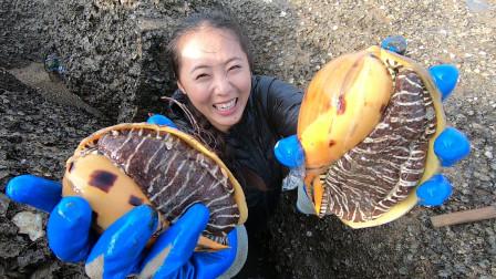渔妹赶海有奇遇,误打误撞碰见双生椰子螺,天然深坑果然不简单