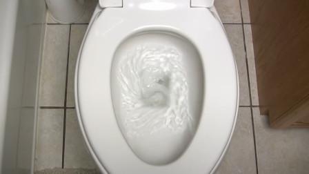 如果全世界的人一起冲厕所,会发生怎样的事情呢?