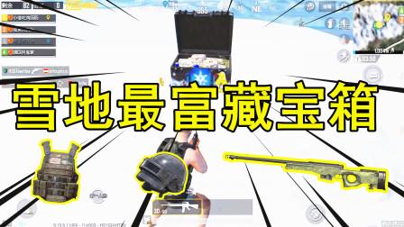 和平精英:雪地最新藏宝箱,信号枪三级头样样都有,直接神装!