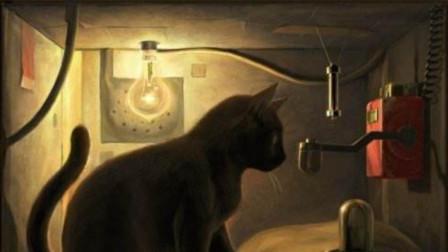 薛定谔方程和薛定谔的猫,为何难以理解?看完才明白!