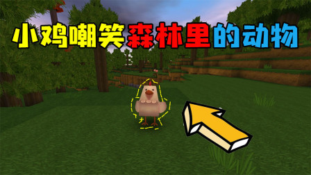 迷你世界:小鸡嘲笑森林里的动物,最后自食恶果,遭到了报应