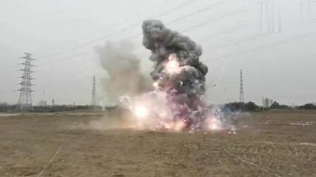 总重量超1吨!150余箱非法烟花爆竹集中引爆销毁 现场腾起蘑菇云