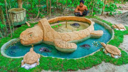 流浪乌龟无家可归,小伙为其搭建豪华池塘,动手能力真的强