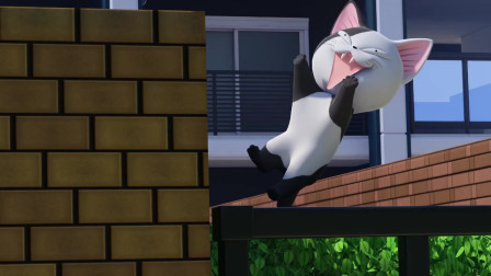 甜甜私房猫:心急的可奇
