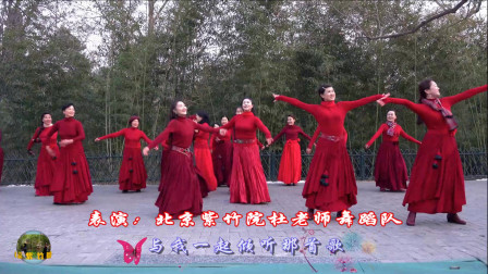 紫竹院广场舞《蓝色天梦》,花絮,学的版本不同,哪版更好看呢?