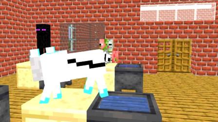 我的世界动画短片:如果怪物在脚手架上放动物