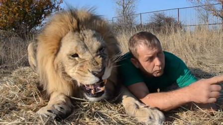 饲养员给雄狮训话,狮子很不服气,下一秒,请憋住别笑!