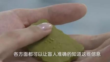 有爱!大学生发明神奇盲人饼干,可自动语音播报,一摸知其口味