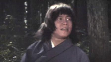 飞渡卷云山(华视介质粤语)Magnificent.Bodyguards.1978.[HD-1080p].立体声.单语.剪辑