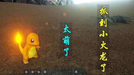 方舟宝可梦14:2只小火龙害怕躲到了岩石缝里,被我失手打死一只