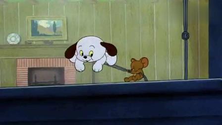 猫和老鼠:汤姆把杰瑞和狗狗赶出家,终于可以睡个好觉了