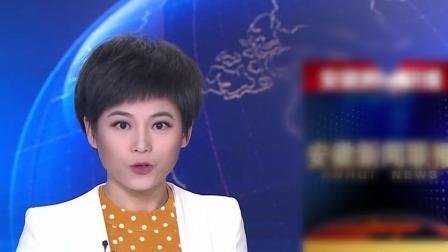 """省委常委会会议强调 把""""严""""的主基调长期坚持下去 推动全面从严治党向纵深发展 安徽新闻联播 20200118 高清"""
