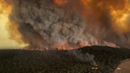 【懂点儿啥28】澳大利亚山火越大,中国越躺枪