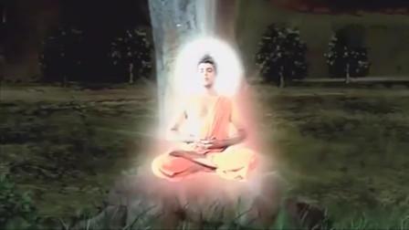 佛陀:菩提树下释迦牟尼开悟终成佛,世界一片祥和之光!