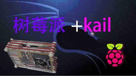 树莓派+kail是什么亚子