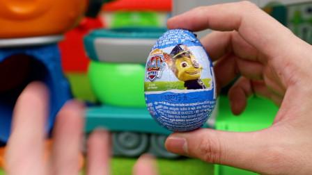 汪汪队立大功惊喜奇趣蛋得到可爱阿奇玩具