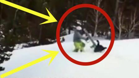 现场!俄罗斯男子滑雪,溅得松鸡一身雪,松鸡当场发怒飞奔直啄男子!