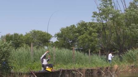 钓鱼新手必看:怎么挂玉米粒《钓鱼百科》