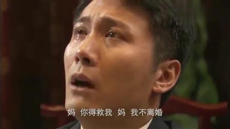 叶落长安:女婿做了对不起女儿的事,丈母娘心痛,真是白疼女婿了