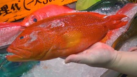 日本海鲜:美味的燕尾斑料理,看看大厨如何制作完成