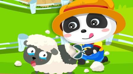 奇奇在一只小羊身上剪毛,羊毛有什么用处呢?宝宝巴士游戏
