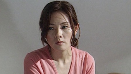 亲情回归(华视介质普通话).DVD.立体声.无字幕