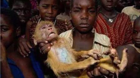 非洲最残忍的美食,大街小巷都有卖,网友:太没人性了!