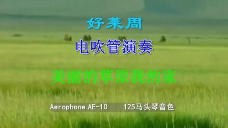 018 电吹管演奏《美丽的草原我的家》