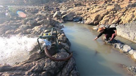 藏匿在海岛的水坑困住值钱野货,刚下去就抓不少,翻找完可不得了