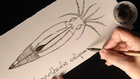 用章鱼肚里的墨水写字会怎样?日本小伙亲测后,解开多年疑惑!