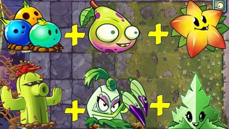 当三个高阶植物为一组,它们和僵尸会有一场怎样的精彩对决?