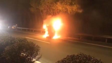 野猪横穿马路顶翻私家车 致3车追尾其中一辆烧成火球