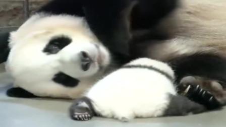 熊猫:当妈的还不习惯有个宝宝的时候