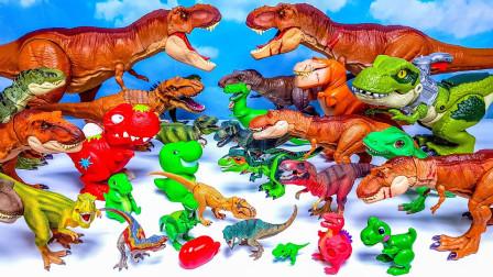 缤纷彩色霸王龙模型玩具展示