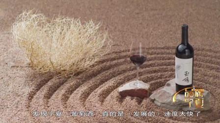宁夏葡萄酒发展势头猛,已达到国际水平,口感细腻受国际友人欢迎