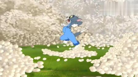 猫和老鼠:母鸡一直下蛋,汤姆看着这些鸡蛋,直接逃跑了