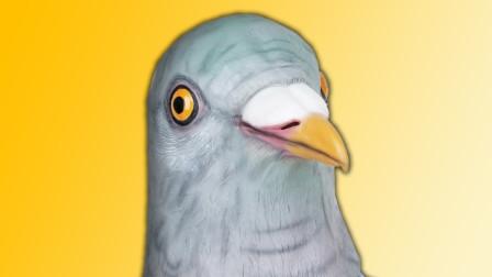 鸽子模拟器,我拥有了超能力,差点毁掉了城市!鲤鱼Ace解说