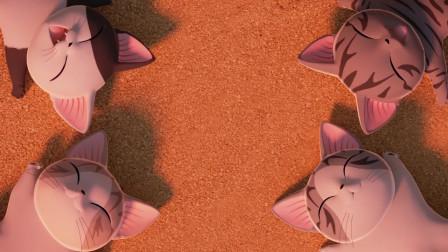 甜甜私房猫:小猫咪,你在干嘛呢