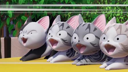 《甜甜私房猫》四个小猫在干嘛呢