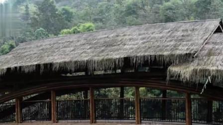 """重庆一农村用716根竹子造桥,竟获建筑界""""奥斯卡"""",网友:真是厉害"""