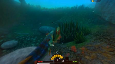 海底大猎杀:凶猛的小绿鱼,遭到蓝色大鱼攻击