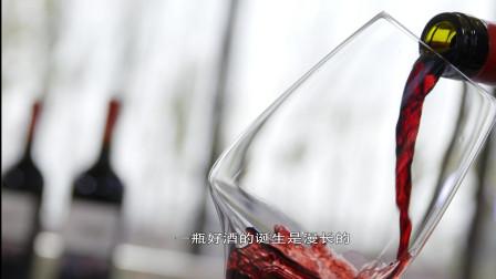 两夺布鲁塞尔大金奖的背后,一位女性酿酒师的职业之路