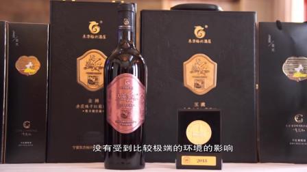 """宁夏这款葡萄酒走向世界,在酒界""""奥斯卡""""中荣获大金奖!"""