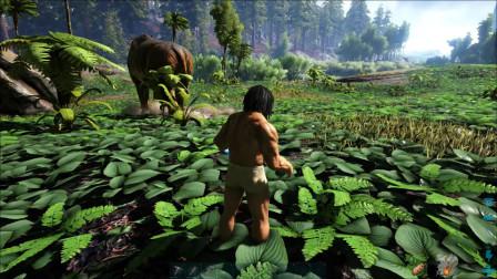 方舟生存进化:小天用多少发弓箭才能打败巨型恐龙呢