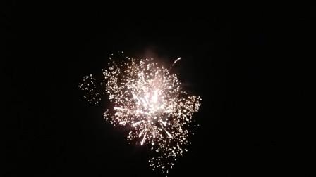 生活17-2020年除夕之夜-烟花绘萃百花齐放-祝朋友们除夕快乐!新春快乐,身体健康,财源广进,万事如意
