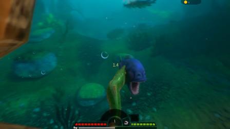 海底大猎杀:这条绿色的鱼是啥品种,敢和食人鱼打架